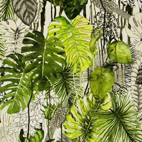 Image: designersguild.co.uk
